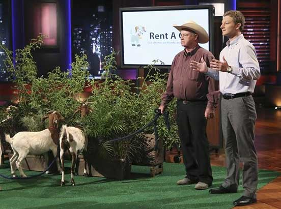 Rent a Goat on Shark Tank